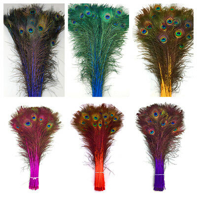 """DYED PEACOCK Feathers 30-45"""" Various colors; Halloween/Costume/Bridal/Burlesque"""