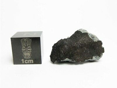 Igdi Chondrite Fall 3.23g Crusted Frag Meteorite from July 12, 2017 Morocco Fall