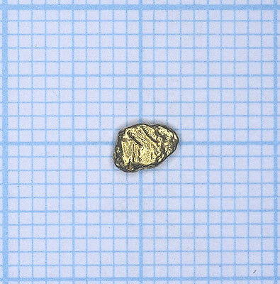 0,242 gramme, pépite d'or naturel du Canada, Yukon Gold nugget (019)
