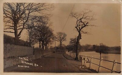 Surrey On The Hersham Road By River Mole Rural Photo Card