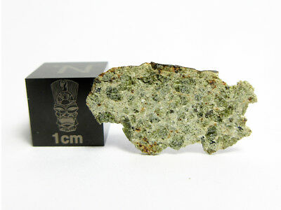 NWA 6927 Diogenite 0.58g Johnstown-like Fresh Crusted Part Slice