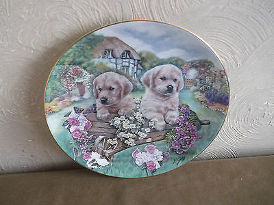 Limited Edition Little Gardeners Cottage Puppies Plate