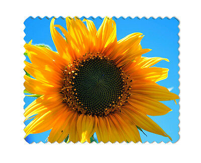 Sunflower Microfiber Lens Glasses Cleaning Cloth