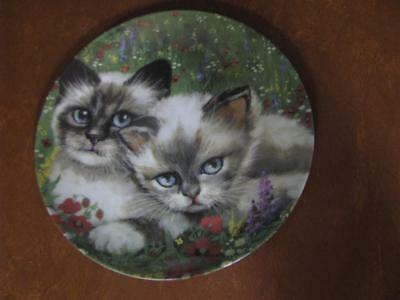 Cat Collection Formalities by Baum Bros Country Cat Plate 8""