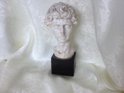 Vintage Sculptured Faux Marble Resin Bust Of David Signed