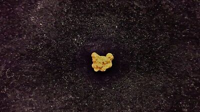 Natural Gold Nugget 0.61g - Kalgoorlie