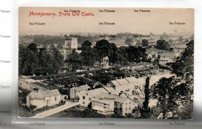 POSTCARD Montgomeryshire  Montgomery From the Old Castle Park
