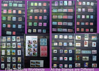 United States Stamp Collection Some Fine Mints All the Stamps are Different