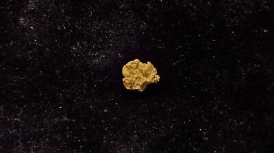 Natural Gold Nugget 1.57g - Kalgoorlie