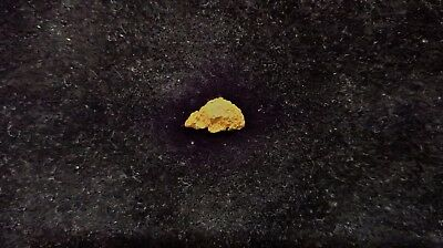 Natural Gold Nugget 0.54g - Kalgoorlie