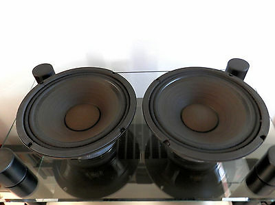 IMG STAGE LINE SP-10/100 PA coppia woofer