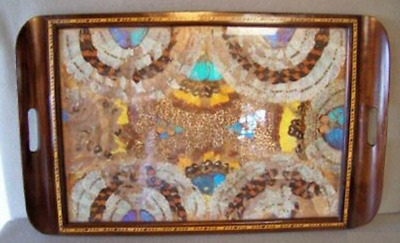 A Beautiful Vintage Butterfly Wing Tray