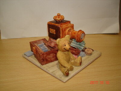 Colour Box Teddy With Camera Equipment