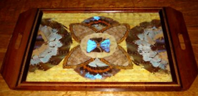 ANTIQUE 1920s ART DECO BUTTERFLY WING TRAY