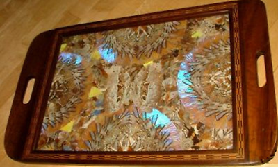 Vintage Art Deco Butterfly Wing Tea Wood Inlay Tray