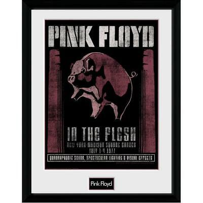 Merchandising Pink Floyd - 1977 (Stampa In Cornice 30x40cm)