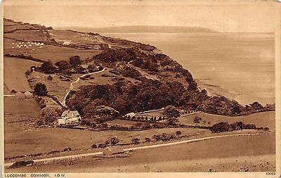 BR39818 Luccombe Common england