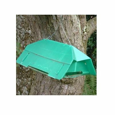 Pea Moth Outdoor Reusable Pheromone Trap - Refills Available