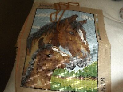 tapestry mare and foal started