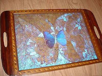 A Butterfly Within Butterfly'S Inlaid Wood Tray