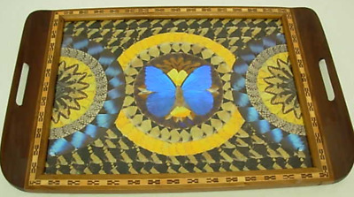 VINTAGE INLAID WOOD BUTTERFLY WINGS TRAY MADE IN BRAZIL 1900s - 1940s