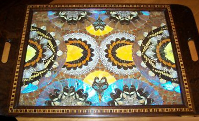 A Beautiful Vintage Inlaid Wood Butterfly Wings Tray