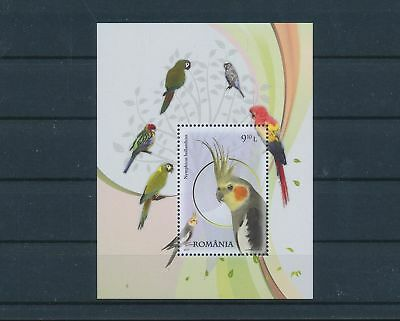 LH25334 Romania parrot animals fauna flora birds good sheet MNH