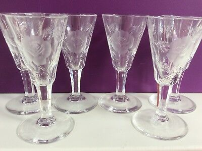 Crystal Etched Frosted Stemmed Small Glasses