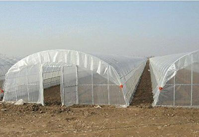 5Year Agfabric Clear Greenhouse Plastic Film Covering UV Protected Film 6mil