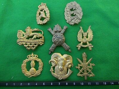Collection (lot) of eight brass Danish cap & collar badges.