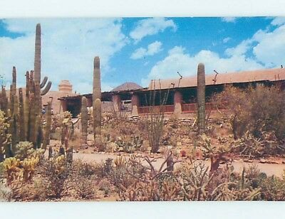 Unused Pre-1980 MUSEUM SCENE Tucson Arizona AZ ho9469