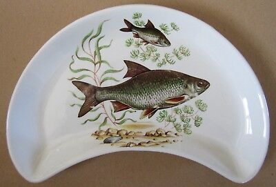 Vintage 1950s Ridgway Vitrock Hotelware Fish picture Crescent Shaped Dish /Plate
