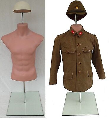 Military Torso Form Small Size Lifelike for Uniform Collectors & Museums