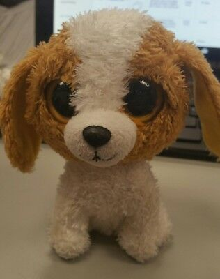 """6/"""" COOKIE the DOG NO HANG TAG TY BEANIE BOOS"""