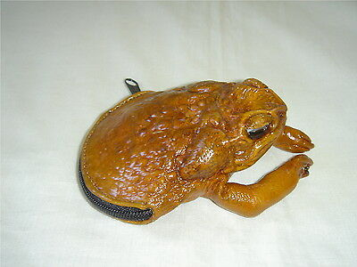 Real Half Frog Coin Purse
