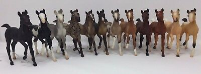 Breyer Classics Andalusian Foals Conga of 12!!!, many from Black Horse Ranch