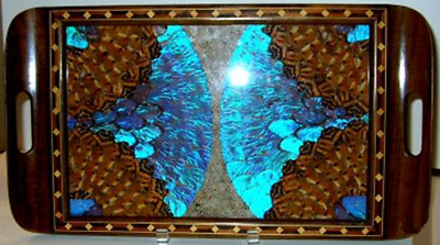Butterfly Wing Tray Inlaid Wood Made In Rio de Janeiro 1900s – 1940s