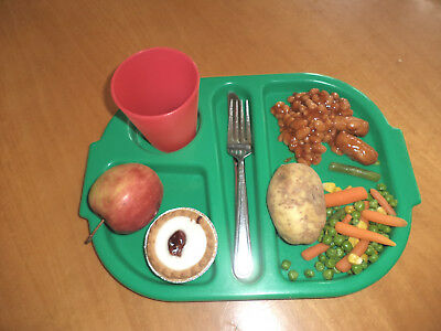 Plastic canteen/camping/catering/school tray, divided sections - loads available
