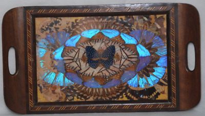 Wonderful Vintage Butterfly Wing Tray.