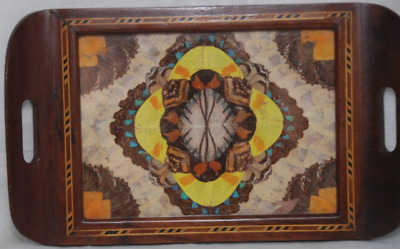 A Gorgeous Butterfly Wing Inlaid Wood Tray from Brazil