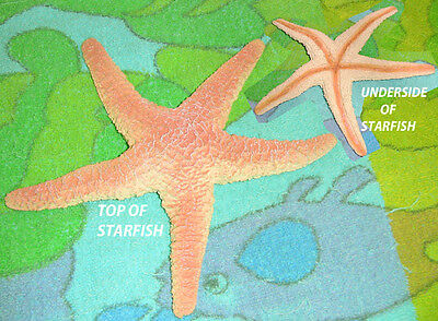 Starfish Replica - Rubber