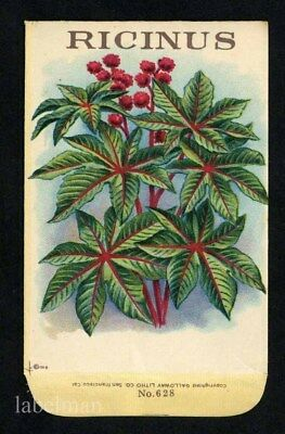 RICINUS, Stock Antique Seed Packet, Country Store, 057