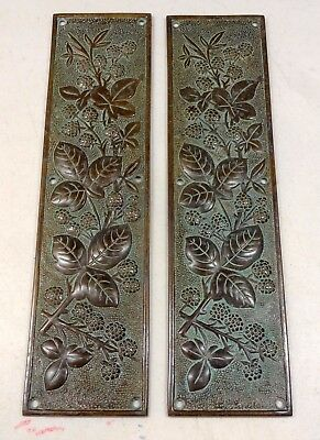 Brass Finger Plates Reclaimed Heavy Cast Door Push Fingerplate