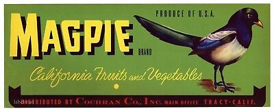 MAGPIE Brand, Tracy California, Bird, **AN ORIGINAL PRODUCE CRATE LABEL**