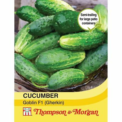 Thompson & Morgan - Cucumber Goblin F1 Hybrid (Gherkin) - 6 Seeds