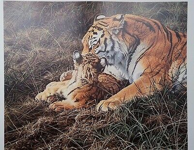 Tender Moment, Alan Hunt, Tiger Mother and Cub, Signed Print