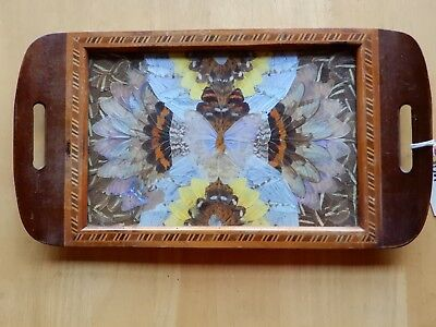 A Vintage Brazil Butterfly Wing Serving Tray Wood Inlay