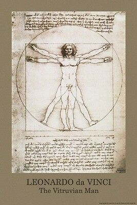 The Vitruvian Man Leonardo da Vinci  Poster  61cmx91cm  New Licensed