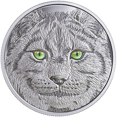 15 CAD Silber Proof In the eyes of the Lynx Luchs Kanada 2017 Canada
