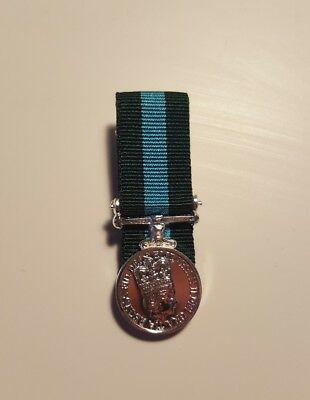 Northern Ireland Home Service Miniature Medal Court Mounted NI